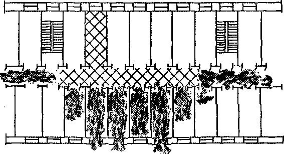 Рис 3. Схема распространения пожара в этаже с коридорной планировкой.